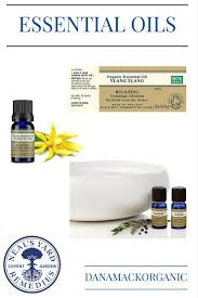 essential oils for fragrance ls 34 best essential oils images on pinterest essential oil uses