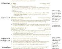 Best Resume Service Online by Aninsaneportraitus Splendid Resume Format Samples Word Ms Word