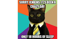 Meme Tie - business cat sorry jenkins it s been a crazy day only 18 hours
