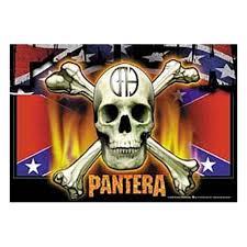Confederate Flag Jewelry Pantera Confederate Flag N Skull Fabric Poster