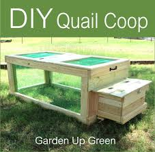diy mobile quail coop ducks pinterest quail coop quails and