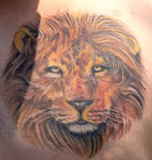 thinking tattoo designs lion tattoo art