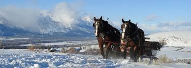 Wyoming travel packages images Jackson hole vacation packages spring creek ranch jackson hole jpg