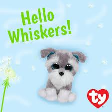 beanie boo family whiskers beanie boos