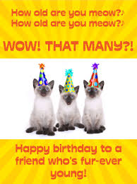 who u0027s counting funny birthday card for friends birthday