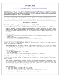 Outside Sales Resume Examples by Software Sales Resumes Free Resume Example And Writing Download