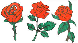 how to draw a rose u2013 rose coloring pages youtube