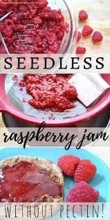 seedless raspberry jam without pectin recipe seeds raspberry