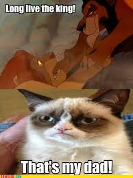 Evil Cat Meme - grumpy cat is an evil princess http meme apartman tumblr com www