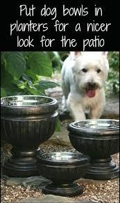 best 25 outdoor dog kennels ideas on pinterest outdoor dog runs