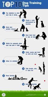 boxer dog training tips 252 best service dog training therapy dog images on pinterest