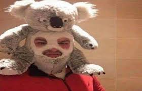 koala man album on imgur