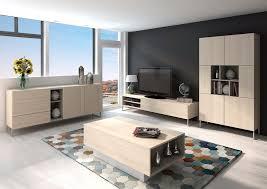 Modular Living Room Furniture Trendy Modular Living Room Furniture Modern Modular Living Room