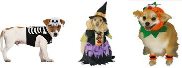 Party Halloween Costumes Dog Halloween Costumes