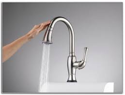 Cool Kitchen Faucet Free Kitchen Faucet Kenangorgun