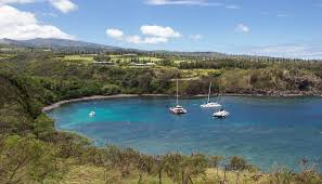 Kula Pumpkin Patch 2014 by Top Things To Do In Maui In 2016 According To Tripadvisor