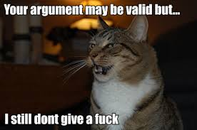 Dont Give A Fuck Memes - argument cat doesn t give fuck lol animals pinterest