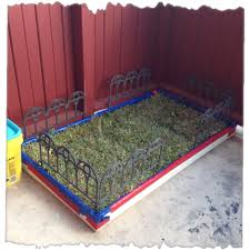 diy apartment patio yard great for dogs love the fence idea keep