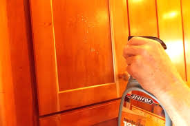 Cleaning Wood Cabinets Kitchen by Kitchen Cabinet Cleaning Products Get Inspired With Home Design