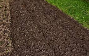 steps for preparing healthy soil for growing vegetables