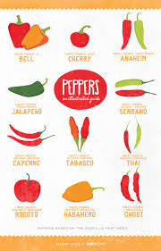 114 best chili pepper types and info images on pinterest