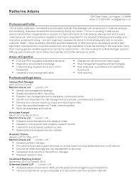 Sample Investment Banking Analyst Resume Risk Management Resume Resume For Your Job Application