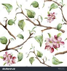 watercolor pattern tree branches apple blossom stock illustration