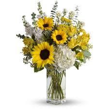 sunflower arrangements sunflowers sunflower arrangements and bouquets delivery