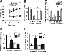 reduced no cgmp signaling contributes to vascular inflammation and