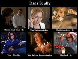 X Files Meme - the x files images haha dana scully meme xd hd wallpaper and