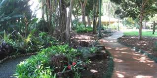 Oahu Botanical Garden by Wahiawa Botanical Garden Weddings Get Prices For Wedding Venues