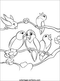 coloriage animaux  Birds  Pinterest