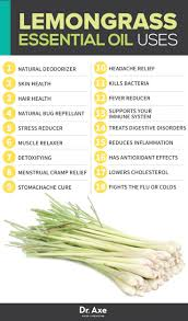 best 25 lemongrass oil ideas on pinterest lemongrass essential