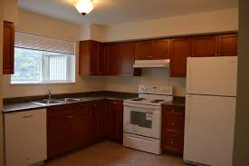 best kitchen cabinets in vancouver how to recycle your kitchen cabinets