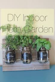 plant an indoor herb garden using mason jars hearthavenhome