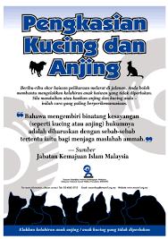 hukum memandulkan kucing wira fans club mandulkan haiwan anda