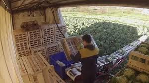 chambre agriculture cotes d armor chambre agriculture cotes d armor 100 images chambres d