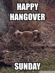 Hangover Memes - hangover