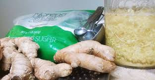ginger all natural homebrewed ginger ale with a ginger bug homebrewing
