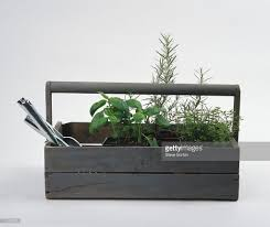 Homemade Garden Box by Potted Plants And Garden Tools In A Homemade Wooden Storage Box