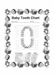 best 25 tooth chart ideas on pinterest baby teething chart