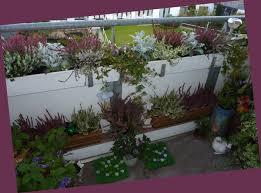 herbstbepflanzung balkon herbstbepflanzung foto bild jahreszeiten herbst natur bilder