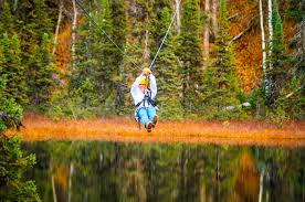denali zipline talkeetna adventure tours