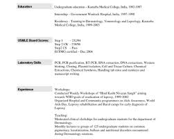 top resume templates cs resume the best computer science resume sle collection 33
