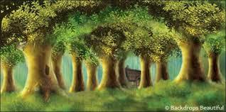 forest backdrop enchanted trees backdrop 2 backdrops beautiful