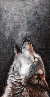 31 best wolves images on pinterest wolf spirit wolves art and