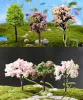 wholesale terrarium plants buy cheap terrarium plants from