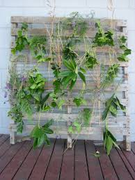 Living Trellis Horticultural Building Systems