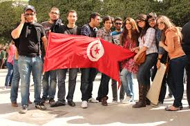 revolution and political transition in tunisia a migration game