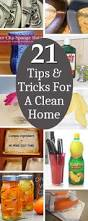 spring cleaning tips and tricks 13761 best organize cleaning images on pinterest gardens diy